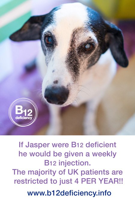 Many B12 deficient patients would prefer 'a dogs life' when it comes to treatment