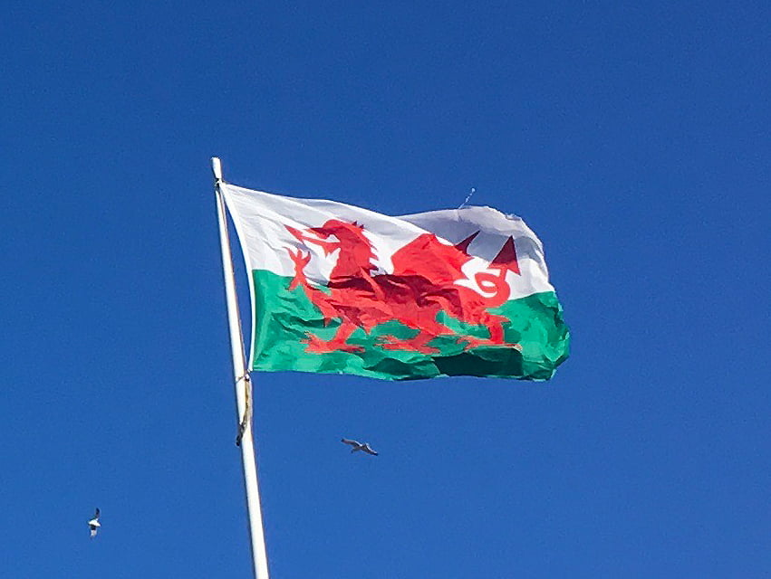 70th Anniversary of the NHS. North Wales RCN fly the flag for B12 deficiency once more
