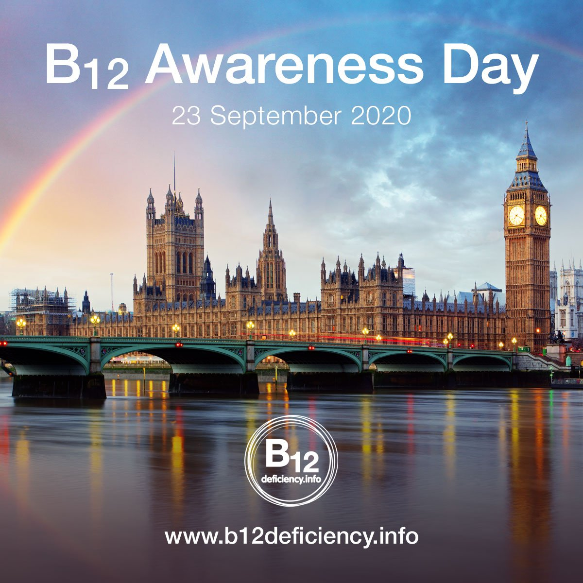 B12 Awareness Day 2020 In the House of Commons