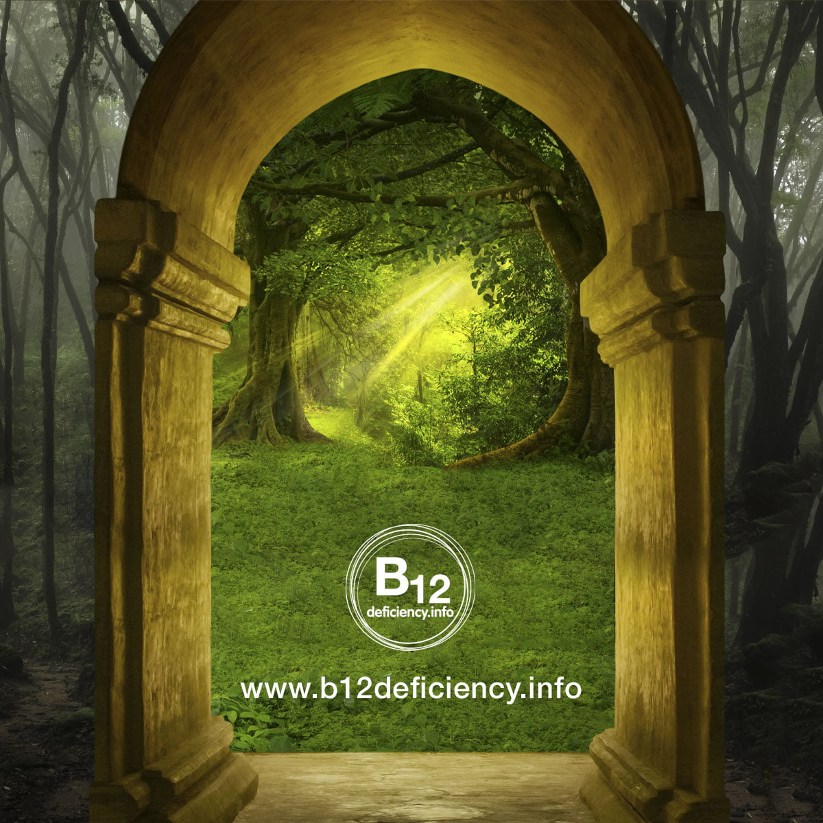 B12 deficiency, the fantasy & the reality