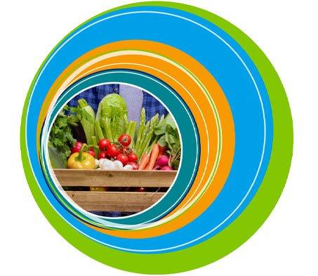 veg-and-vegan-Banner-mobile